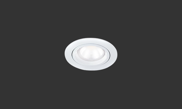 LED Downlighters product photograph